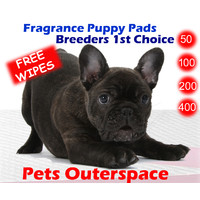 Fragranced Puppy Training Pads